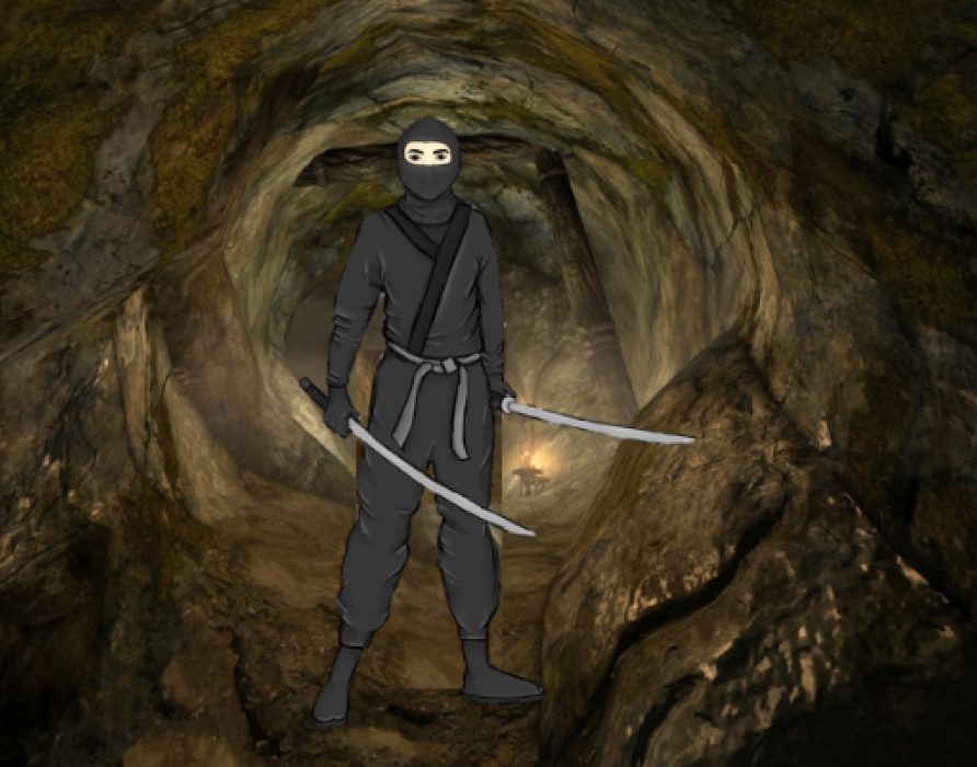 A Ninja Quest